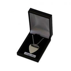 Plektren Bedrucken - Silberplektrum (mit Gravur)